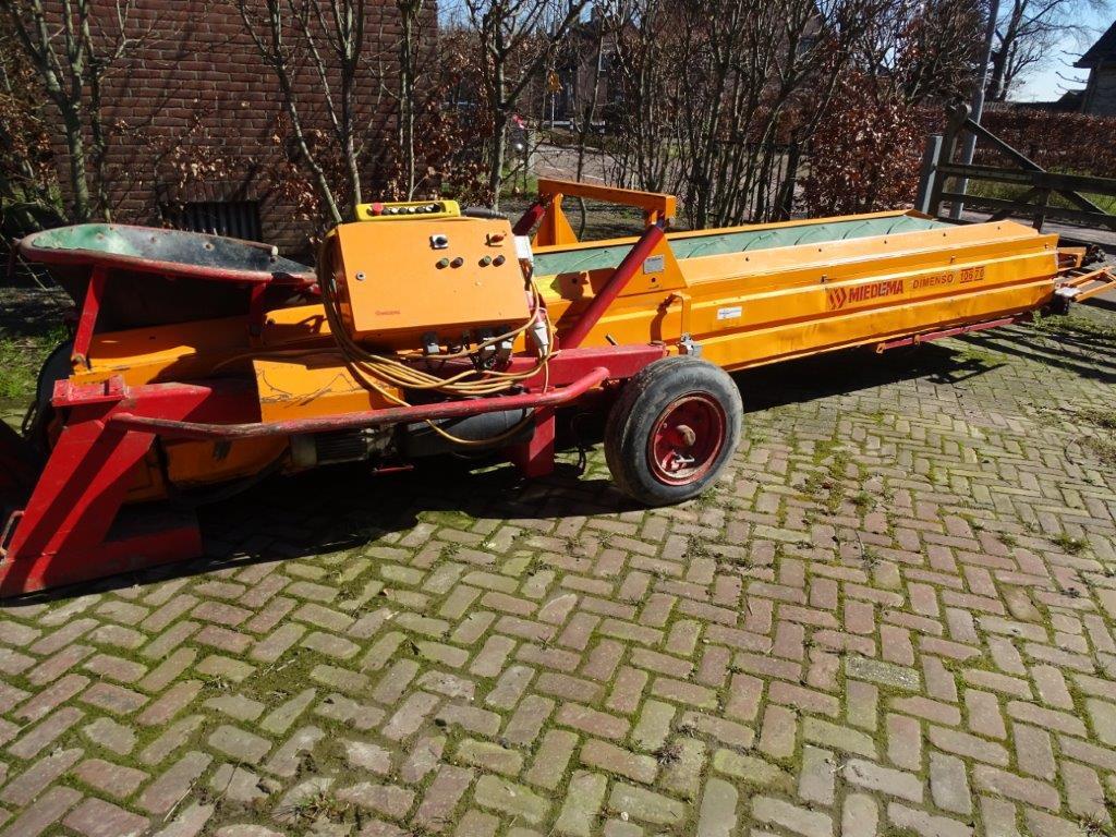 DSC03365 (1)